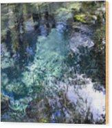 The Springs Wood Print
