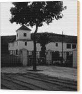 The Square Tree Wood Print