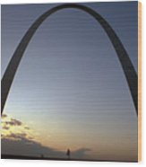 The St. Louis Arch Wood Print