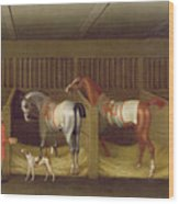 The Stables And Two Famous Running Horses Belonging To His Grace - The Duke Of Bolton Wood Print