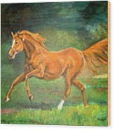 The Stallion-horse Art Painting  Wood Print