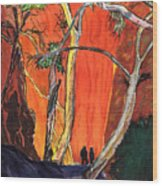The Standley Chasm Wood Print