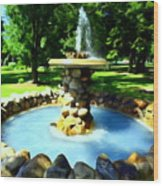 The Stone Fountain Wood Print