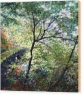 The Stone Wall Wood Print
