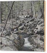 The Stoney Way Wood Print