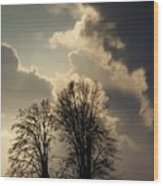 The Storm Iv Wood Print
