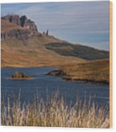 The Storr Wood Print