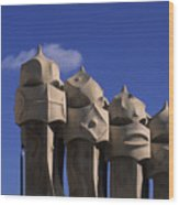 The Strangely Shaped Rooftop Chimneys Wood Print