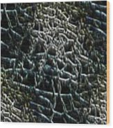 The Stream Bed Wood Print
