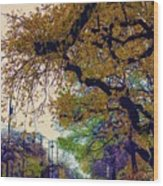 The Street Trees Wood Print