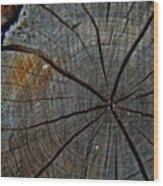 The Stump Wood Print
