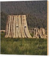 The Stumps Have Eyes Wood Print
