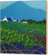The Sugar Loaf County Wicklow Ireland Wood Print