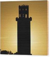 The Sulphur Springs Tower Wood Print