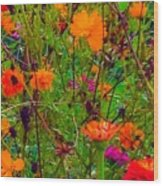 The Summer Flower Party Wood Print