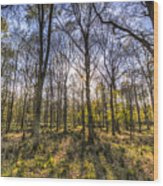 The Sunset Forest Wood Print