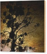 The Sunset Tree Wood Print