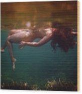 The Superior Mermaid Wood Print