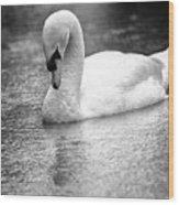 The Swans Solitude Wood Print