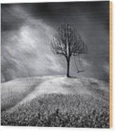 The Swing That Swings Alone Wood Print
