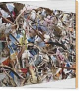 The Synergies Of Recycling Wastes And Intellects #511 Wood Print