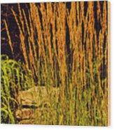 The Tall Grass Wood Print