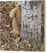 The Teddy Bear In The Woods Wood Print