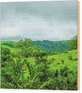 The Terrain Of Costa Rica  Wood Print