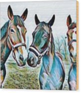 The Three Amigos Wood Print