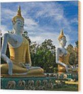 The Three Buddhas  Wood Print
