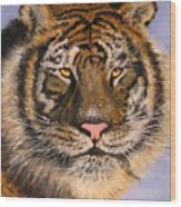 The Tiger, 16x20, Oil, '08 Wood Print