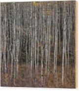 The Tight Aspens Wood Print