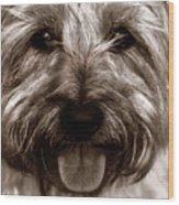 The Toto Wood Print