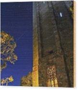 The Tower At Night Wood Print