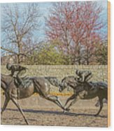The Track - Thoroughbred Park - Lexington Kentucky Usa Wood Print