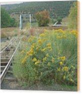 The Tracks At Pagosa Junction Wood Print