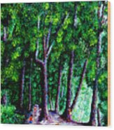 The Trail Wood Print