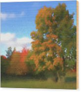 The Transition From Summer To Fall. Wood Print