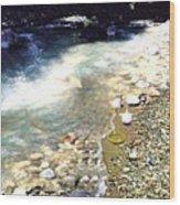 The Treasure Of River Usora  Wood Print