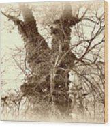 The Tree - Sepia Wood Print