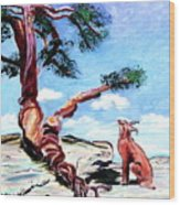 The Tree And The Bobcat Wood Print