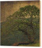 The Tree And The Range Wood Print