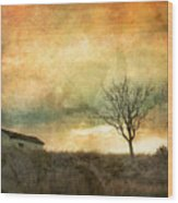 The Tree And The Roof Top Wood Print