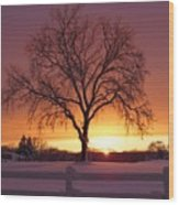 The Tree At Sunset Wood Print