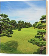 The Tree Garden Wood Print