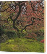 The Tree In Spring Wood Print