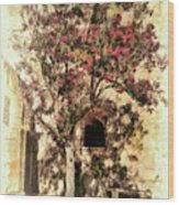 The Tree In The Corner Of The Courtyard Wood Print