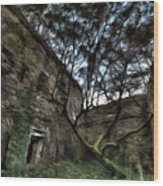 The Tree In The Fort - L'albero Tra Le Mura Del Forte Paint Wood Print