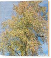Town Tree  Wood Print