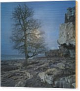 The Tree Of Inis Mor Wood Print
